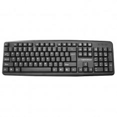 Tastatura Amarillo Esperanza, USB 2.0