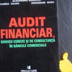 Audit financiar servicii conexe si de consultanta Alexandru Rusovici