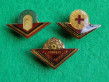 Insigne, Pionier Sportiv, Pionier Sanitar si Fruntas in Munca Patriotica