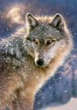 Puzzle Castorland - 500 de piese - Lone wolf
