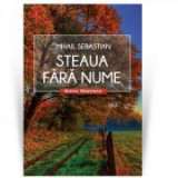 Steaua fara nume. Colectia Scena Hoffman - Mihail Sebastian