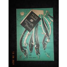 PETRE GRANT - POVESTI CU STIUCI (1979)