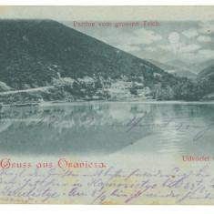 4682 - ORAVITA, Caras Severin, Litho, Romania - old postcard - used - 1898, Circulata, Printata