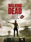 Poster cu 2 fete - The Walking Dead - mai multe modele | Insight Editions
