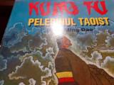 KUNG FU - PELERINUL  TAOIST - DENG MING DAO, ED TEORA,1996,196 P