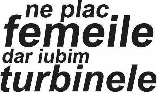 Sticker Auto Ne Plac Femeile Iubim Turbinele