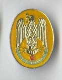 Insigna militara - unitate de Transmisiuni - UM 01635 - Tg Carbunesti