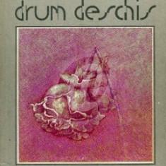 Drum deschis (Ed. Facla)