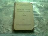 CE POATE AJUNGE UN MESERIAS ROMAN - N. IORGA