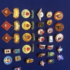 Lot 32 insigne pionieri - PIONIERI