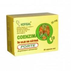 Coenzima Q10 in ulei de catina Forte 30 mg 40 capsule - Hofigal
