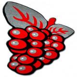 Covor copilăresc Happy C299 Struguri roșu, 80x80 cm