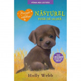 Nasturel fuge de-acasa - Holly Webb