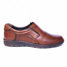 Pantofi barbati din piele naturala, Zento, Cobra, Maro, 39 EU