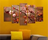 Set 5 tablouri Blooming, Charm