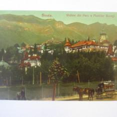 Sinaia-Trăsura comerciala G.Matheescu:Coloniale/Delicatese/Vinuri,carte pos.1906