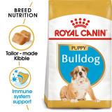ROYAL CANIN Bulldog JUNIOR - 3 kg