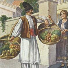 AMS - ILUSTRATA OLTEAN COSTUME POPULARE, CIRCULATA