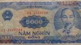 BANCNOTA 5000 DONG 1991-VIETNAM