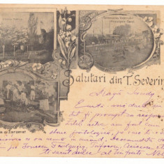 1393 - TURNU SEVERIN, Market, Harbor, Litho, Romania - old postcard - used  1899, Circulata, Printata