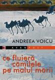 Ce fluiera camilele pe malul marii/Andreea Voicu