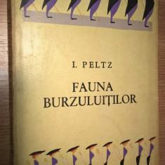 I. Peltz - Fauna burzuluitilor - nuvele (Editura pentru Literatura, 1965)