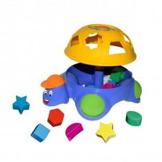 Jucarie sortator pentru copii sub forma de testoasa cu carapace detasabila, 6 forme
