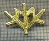 Y 1766 INSIGNA - MILITARA -SEMN DE ARMA -VANATORI DE MUNTE  -PENTRU COLECTIONARI