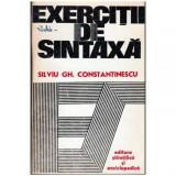 Exercitii de sintaxa, Silviu Constantinescu