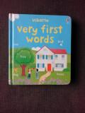 VERY FIRST WORDS (CARTE PENTRU COPII, IN LIMBA ENGLEZA)