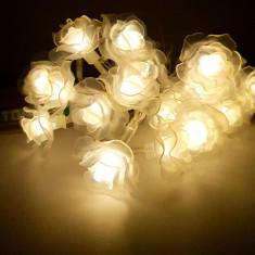 Instalatie de Craciun cu Baterii Tip Sir 2.5 m 20 LED -uri Flori Alb Cald