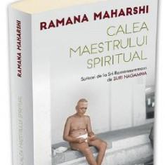 Calea maestrului spiritual - Ramana Maharshi