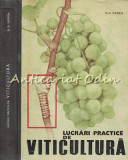 Lucrari Practice De Viticultura - D. D. Oprea - Tiraj: 2430 Exemplare