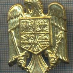 Y 1544 INSIGNA-MILITARA  -EMBLEMA COIFURA -PENTRU COLECTIONARI