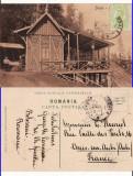 Sinaia - Sfanta Ana, Circulata, Printata
