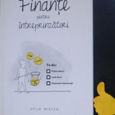 Finante pentru intreprinzatori Delia Mircea