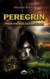 Cumpara ieftin Nicolae Balota. Peregrin prin patria cuvintelor/Iulian Boldea