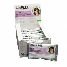 Amflee Spot On XL (peste 40 kg)