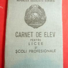 Carnet de Elev RSR pt Licee si Scoli Profesionale ,coperti cartonate si panzate