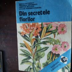 Din secretele florilor     davidescu