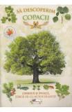 Sa descoperim copacii, Aramis