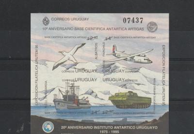 29 de ani de la infintarea institutului antartic din Uruguai. foto