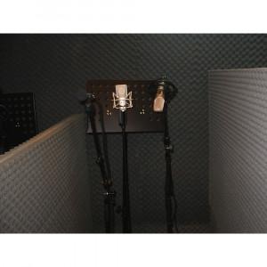 Burete acustic & izolator fonic pt Studio, Cinema, Club, Boxe, etc. 200x100x3cm