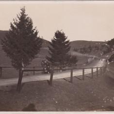 Bran CP necirculata ND(1931)