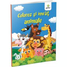 Colorez şi învăţ Colorez și învăț animale