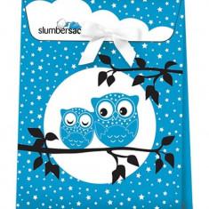 Ambalaj cadou Blue Owls