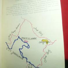 Monografie - Casa Grecescu- Satul Birlogeni judet Mehedinti , 6 pag.+2 fotogr
