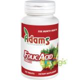 Acid Folic 400mcg 120tb