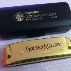 MUZICUTA profesionala germana marca HOHNER GOLDEN MELODY model 543