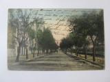 Cumpara ieftin Calarasi-Bulevardul Traian,carte postala circulata 1908